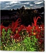 Night Garden Series 3 Canvas Print