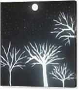 Night Of Lights Canvas Print