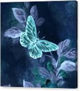 Nightglow Butterfly Canvas Print