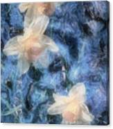 Nighttime Narcissus Canvas Print