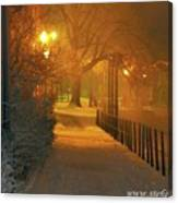 Nigthwalk  Canvas Print