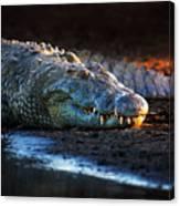 Nile Crocodile On Riverbank-1 Canvas Print