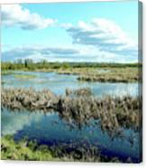 Nisqually Marsh Canvas Print