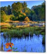 Nisqually Pond Canvas Print