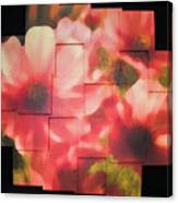 Nocturnal Pinks Photo Sculpture Canvas Print