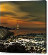 Nocturnal Tranquility Canvas Print