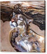 Nonchalant Canvas Print
