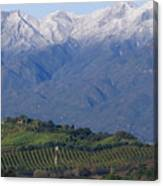 Nordhoff Ridge Canvas Print
