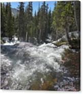 North Fork Middle Boulder Creek  Canvas Print