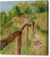 North Carolina Apple Orchard Canvas Print