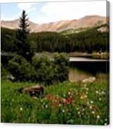 North Fork  Lake Colorado Canvas Print
