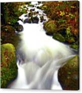 North Fork Of Wallace Canvas Print
