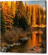 North Fork Yaak River Fall Colors #1 Canvas Print