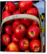 North Ga. Apples Canvas Print