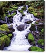 North Umpqua Wild And Scenic River Canvas Print