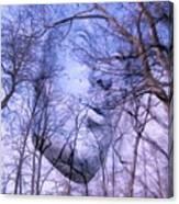 North Wind Canvas Print