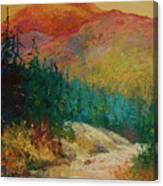 Northern Essence  Canvas Print