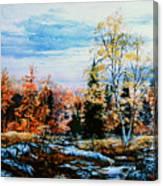 Northern Gold Canvas Print