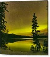 Northern Lights Over The Pines Canvas Print