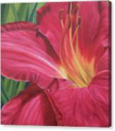 Northern Lily Canvas Print