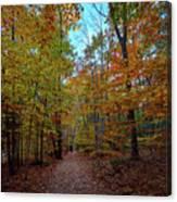 Northern Loop Trail Canvas Print