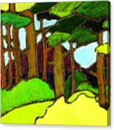Northern Pathway Canvas Print