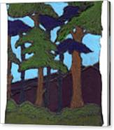 Northern Woods Canvas Print