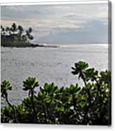 Northwest Maui Bay Canvas Print