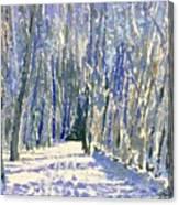 Norwalk River Valley Trail Canvas Print