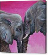 Nose To Nose In Pink Canvas Print
