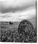 Nostalgia - Hay Bales In Field In Black And White Canvas Print