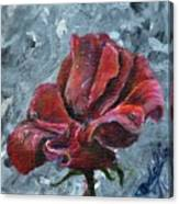 Not Every Rose Is Perfect Canvas Print