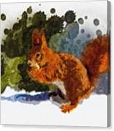 Not Much Goes On In The Mind Of A Squirrel Canvas Print