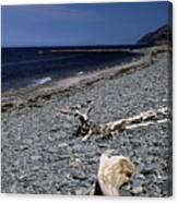 Nova Scotia Pebble Beach Canvas Print