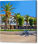 Novalja On Pag Island Palm Waterfront View Canvas Print
