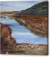 Novato Bay Inlet Canvas Print