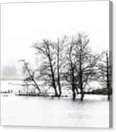 November Flood 1 Canvas Print