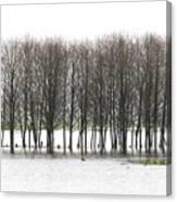 November Flood 2 Canvas Print