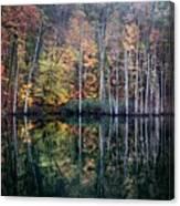 November Ripples Canvas Print