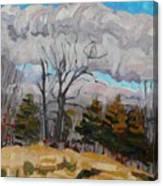 November Sky 2008 Canvas Print