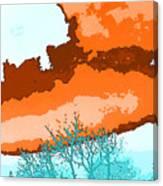 November Sky Canvas Print