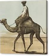 Noyes, Edward , Riding Camel Canvas Print