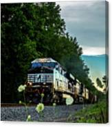 Ns 62w With Blurred Flowers Canvas Print