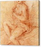 Nude Seated Woman Playing A Lute Canvas Print