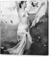 Nude With Butterflies Canvas Print