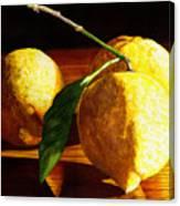 Nurse Beckys Lemons Canvas Print