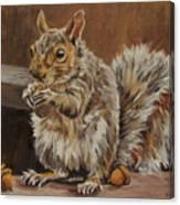 Nutkin Canvas Print