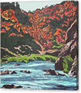 Nyangombe River Canvas Print
