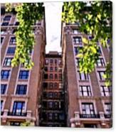 Nyc Building With Tree Overhang Canvas Print