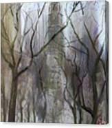 NYC Central Park 1995 Canvas Print